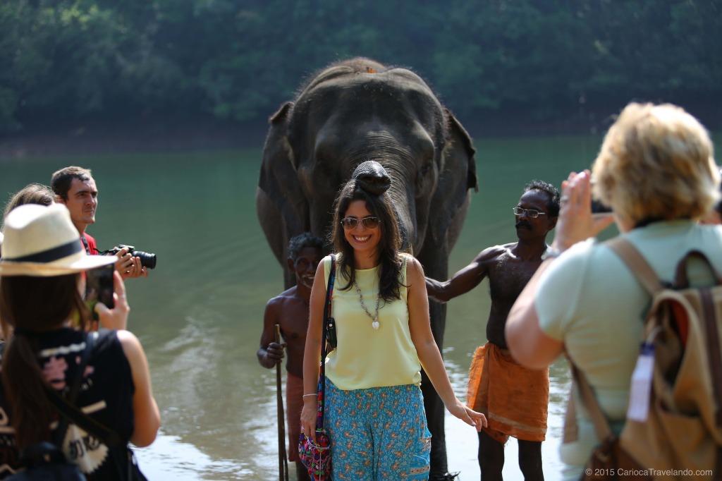 Kerala, Índia: Um Elefante incomoda muita gente… Só que aqui não!