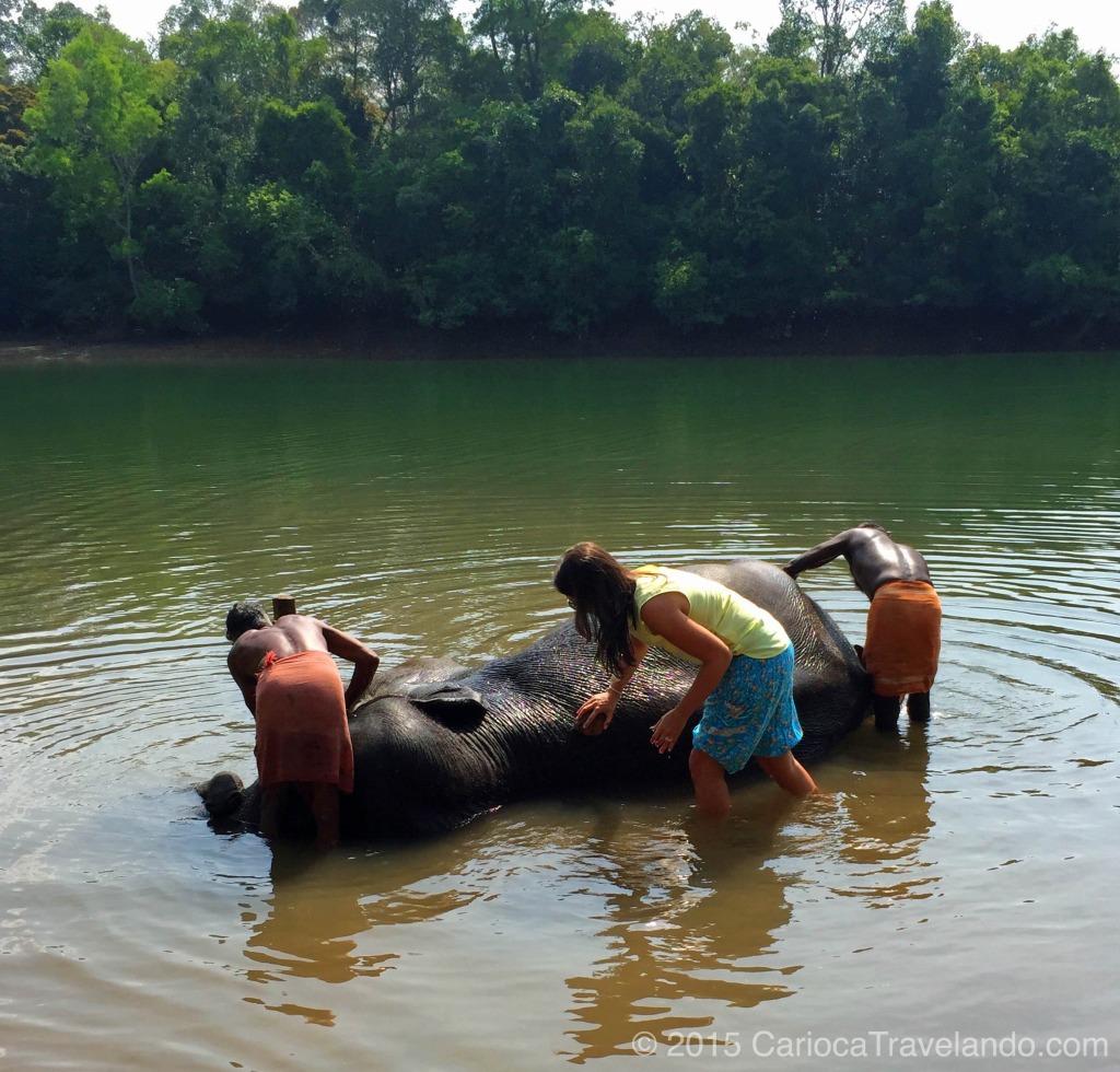 Nunca imaginei que ia dar banho em um elefante na minha vida. E não é que foi divertido?